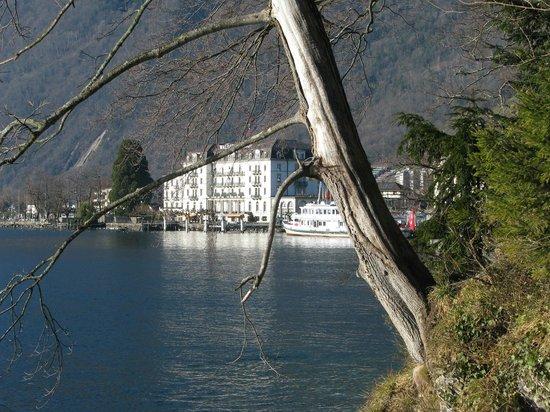 Seehotel Waldstätterhof Brunnen: Hotelsicht vom Seeufer