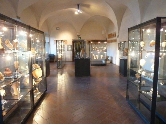 Museo Archeologico Mecenate: interno1