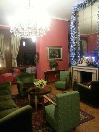 Hotel Fontana: Salone