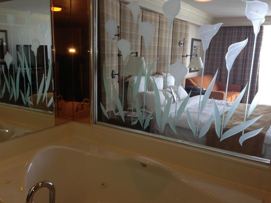 Niagara Falls Marriott on the Falls: Washroom glass wall