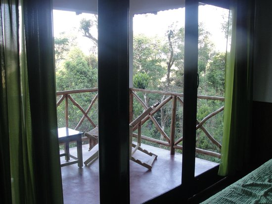 Mugilu: view from room