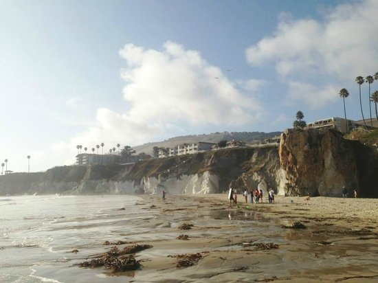 SeaCrest OceanFront Hotel : The view of the hotel from down on the beach