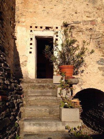 Agriturismo Castello di Bagnolo : La porta della yoga room di davidatt al castello di bagnolo