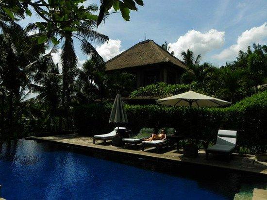 Alam Shanti : Pool