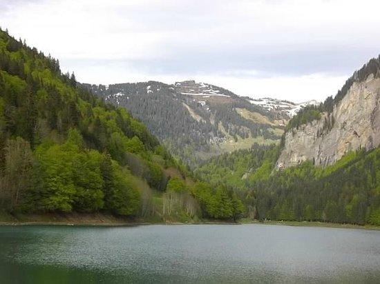 Hotel-Restaurant les Sapins : Vue du lac depuis l'hôtel