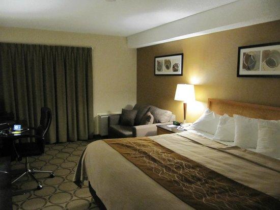 Comfort Inn Hamilton : Room 111