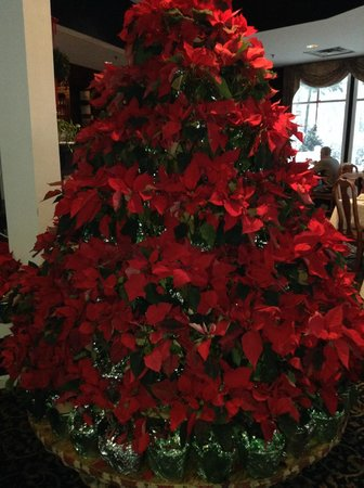 White Mountain Hotel and Resort: Poinsettia Christmas tree in dining room