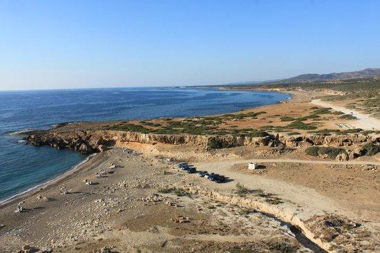 Lara Beach: on the trip back