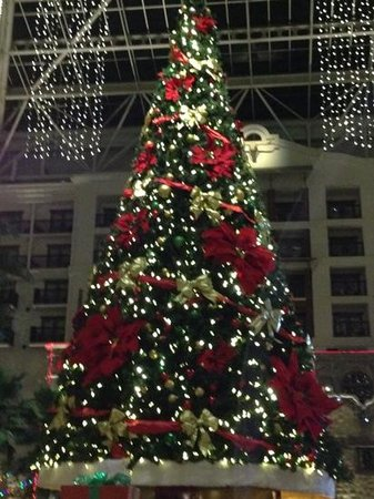 Gaylord Texan Resort & Convention Center: main tree