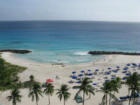 Hilton Barbados Resort: View of beach
