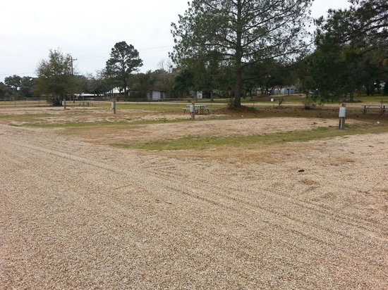Sageville RV Park: View of lots