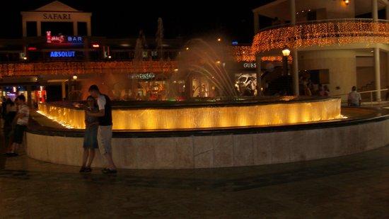 Fuente de luz y música: De Fountain