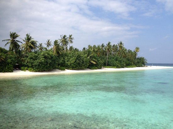 Dhevanafushi Maldives Luxury Resort Managed by AccorHotels : the island