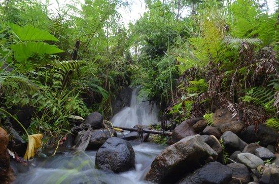 Kelimutu Crater Lakes Eco Lodge, Moni, Flores: Kleiner Wasserfall