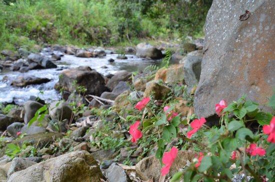 Kelimutu Crater Lakes Eco Lodge, Moni, Flores: Flüsschen vor dem Hotel