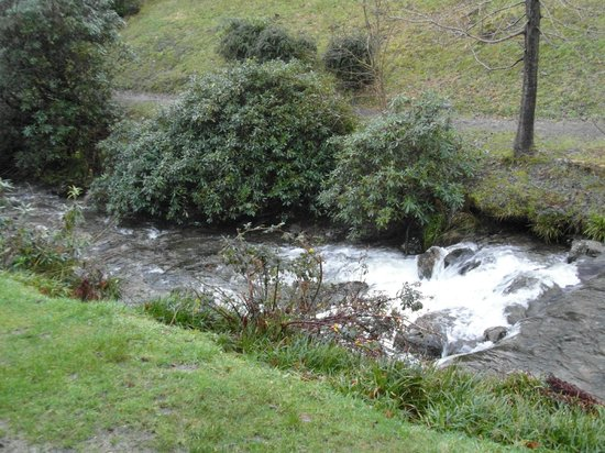 Drimsynie Estate Holiday Village: View Of the stream from lodge 11. Very noisy Stream !!