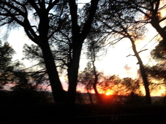 Templo de Debod : sunset