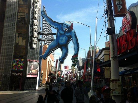 Universal CityWalk Hollywood: city land