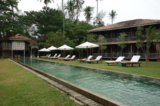Temple Tree at Bon Ton: swimming pool