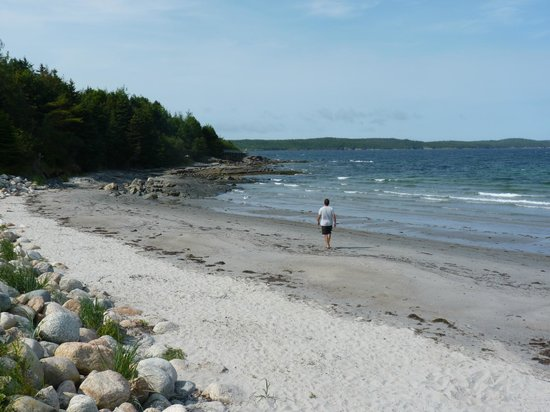 The Prints of Whales Inn: One of the beautiful beaches in Eastport