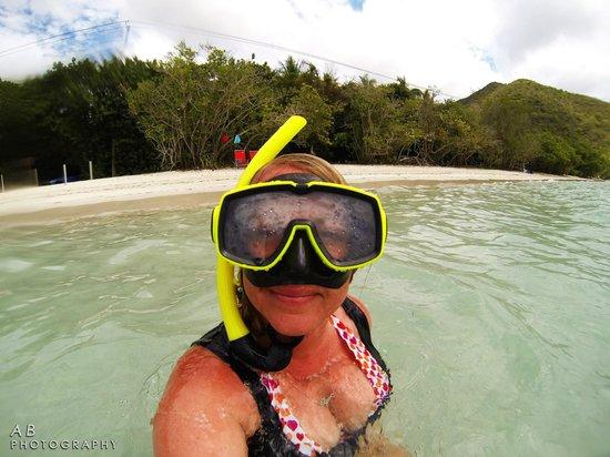 Concordia Eco-Resort : Snorkeling Trunk Bay