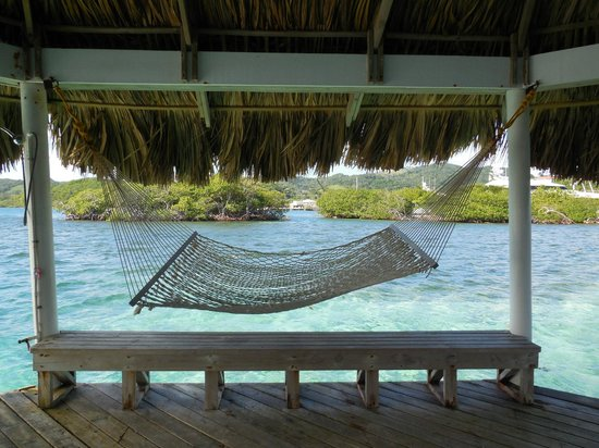 Barefoot Cay: Swimming area