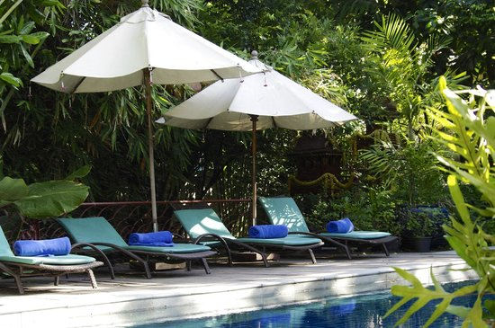 Ariyasomvilla: Swimming Pool