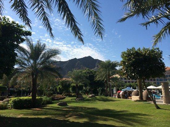 Fujairah Rotana Resort & Spa - Al Aqah Beach: Территория отеля