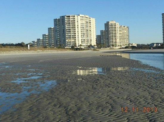 Ocean Creek Resort : view at low tide