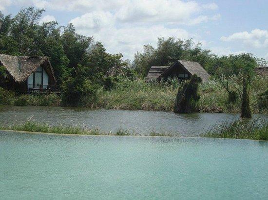 Jetwing Vil Uyana: Common pool