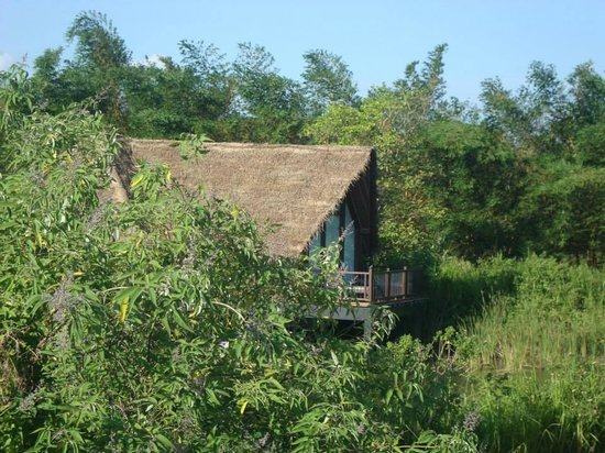 Jetwing Vil Uyana: Dwelling