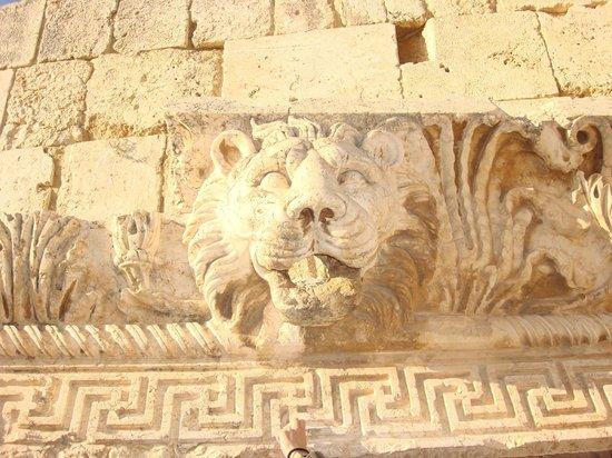 Templos de Baalbek: Lion of a Baalbek