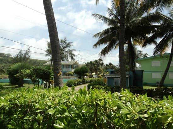 Parador Villas del Mar Hau: Jardin