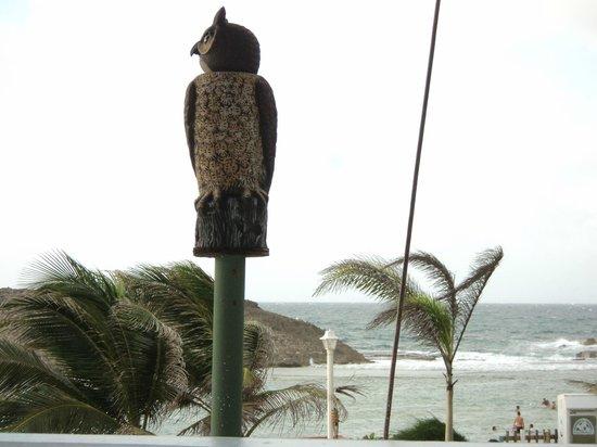 Parador Villas del Mar Hau: Desde el restaurante
