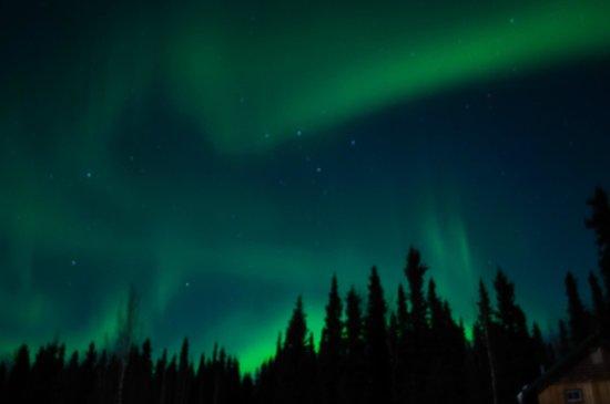 Northern Sky Lodge: Northern LIghts