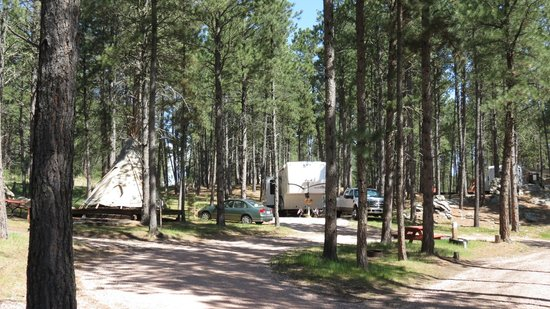 Fort welikit family campground updated 2017 prices for Cabins near custer sd