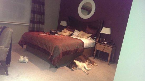 Macdonald Windsor Hotel : Our room