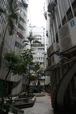 Opohills Boutique Apartments: 中庭
