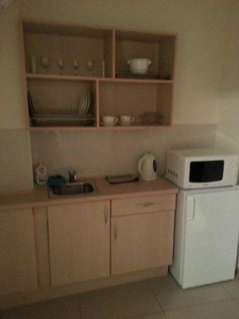 Basseynaya Apart Hotel : Миниатюрная кухня