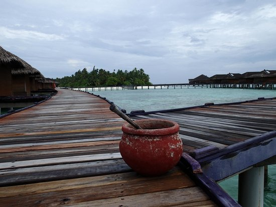 Medhufushi Island Resort : Pier to water villas