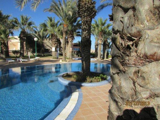 Club Oasis Marine : Piscine au milieux des palmiers