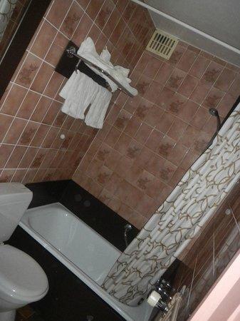Hotel Olympia Bruges: Kleine badkamer