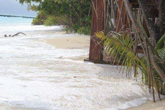 Madhiriguraidhoo Island: Вода подходит к номерам