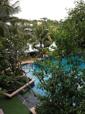 Novotel Phuket Kata Avista Resort and Spa : lovely view from the room, tropical trees and the pool