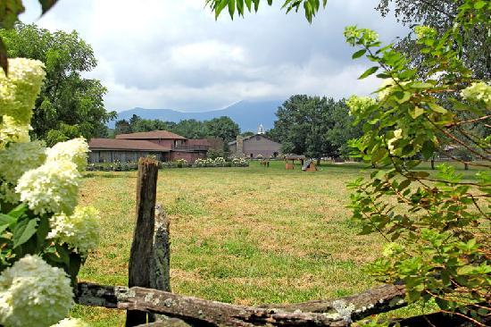 Horse Pasture at the Dillard House