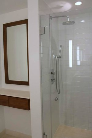 Cassa Hotel 45th Street New York : Nice Shower