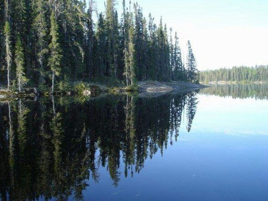 Latto's Wilderness Cabins Inc.: Just incredibly peaceful