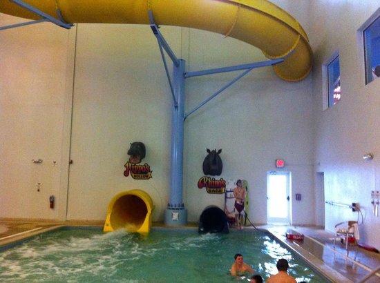 Surfari Joe's Indoor Wilderness Water Park : View of the Water slides.