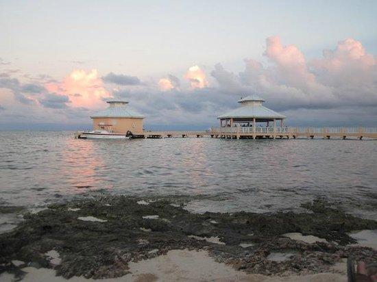 Morritts Tortuga Club and Resort: Mimi's Dock Bar