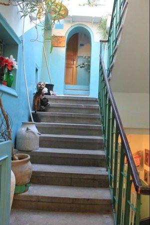 Old Jaffa Hostel: stairway
